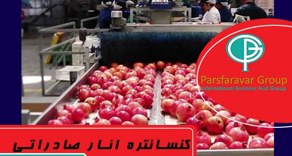صادرات کنسانتره انار
