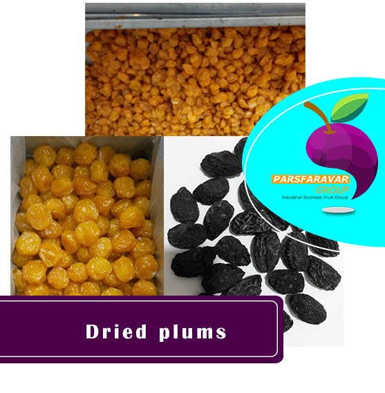 sell dried plums